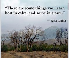 There are some things you learn best in calm, and some in storm. - Willa Cather